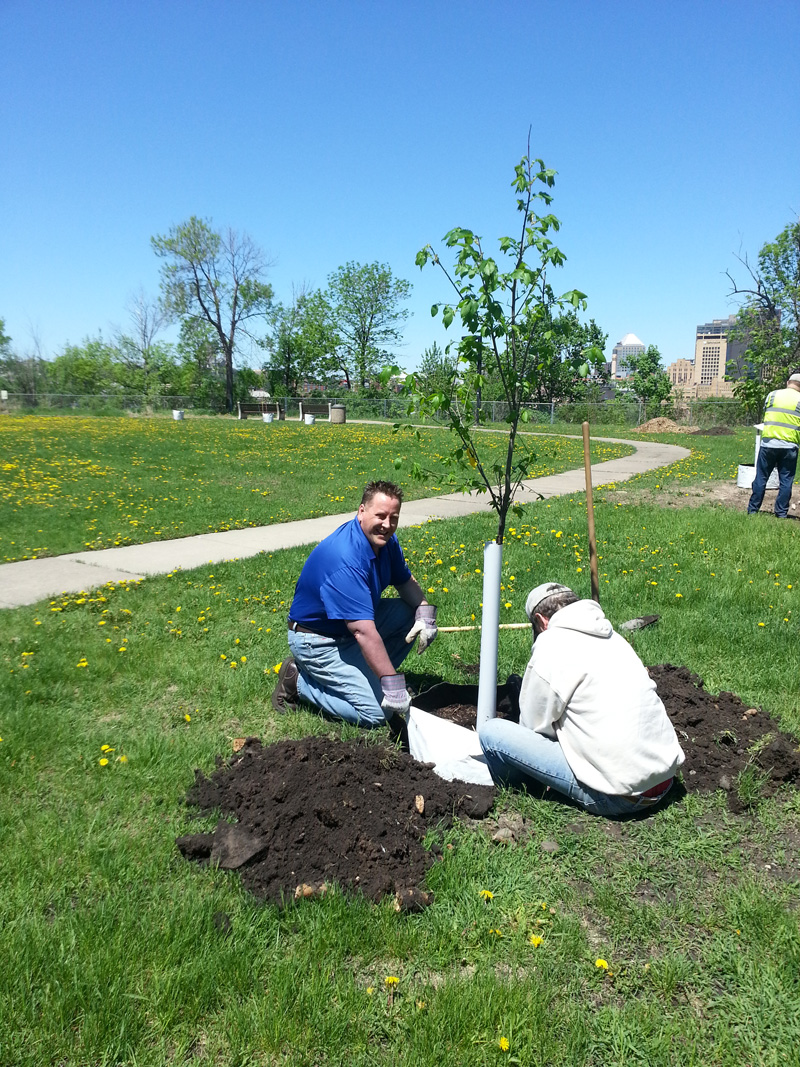 Brad Berg helps plant a tree in Prospect Park